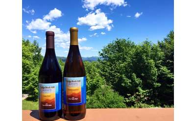 two bottles of wine with a scenic backdrop