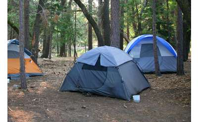 three tents in the woods surrounded by trees
