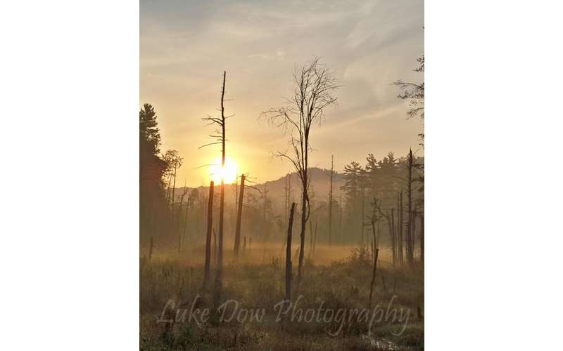 morning fog on Tongue Mtn in the Lake George region