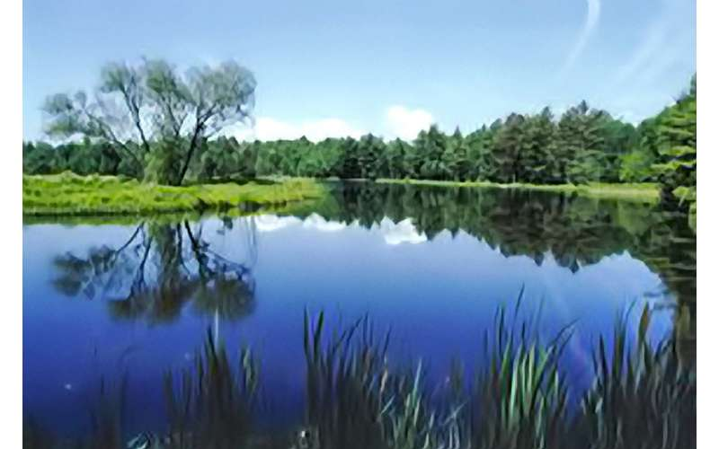 Stay At The Beautiful Saratoga Escape Lodges And Rv Resort