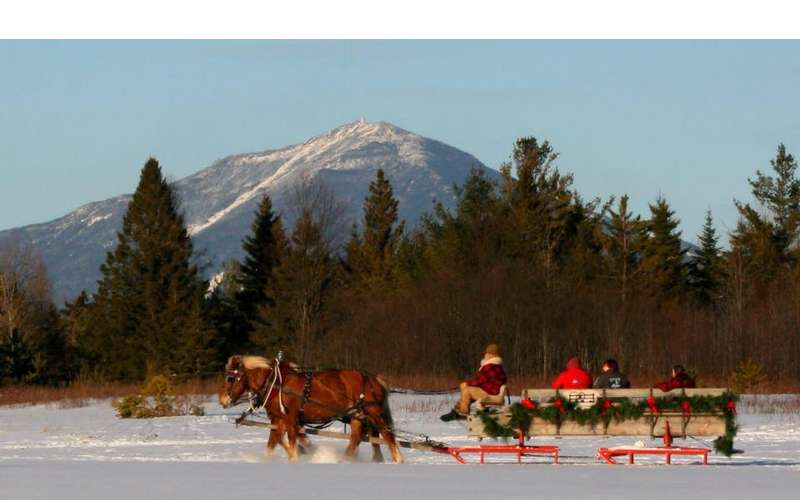 Country Dreams Farm  and    Adirondack Sleigh Rides (1)