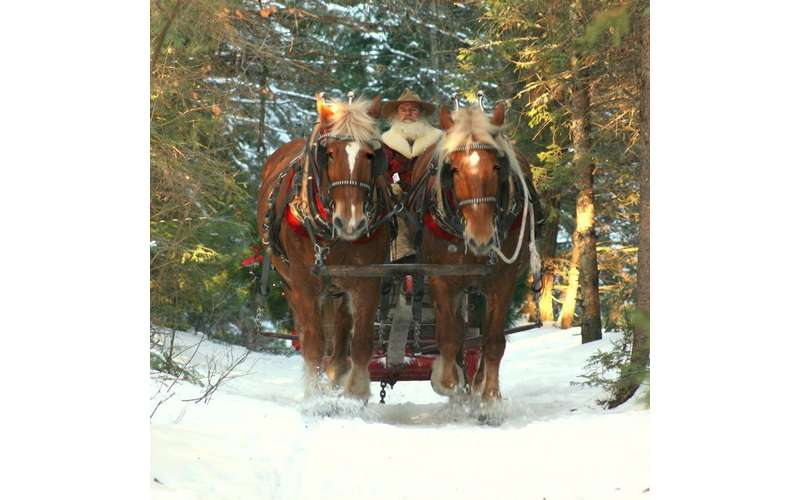 Country Dreams Farm  and    Adirondack Sleigh Rides (13)