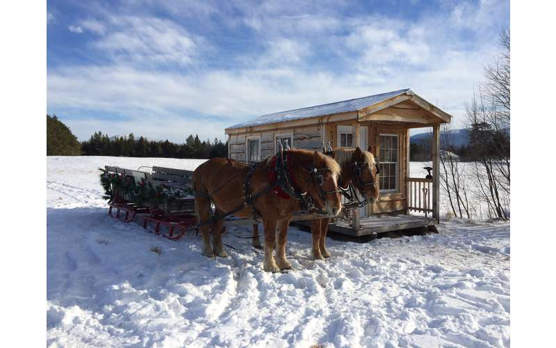 Country Dreams Farm  and    Adirondack Sleigh Rides (9)
