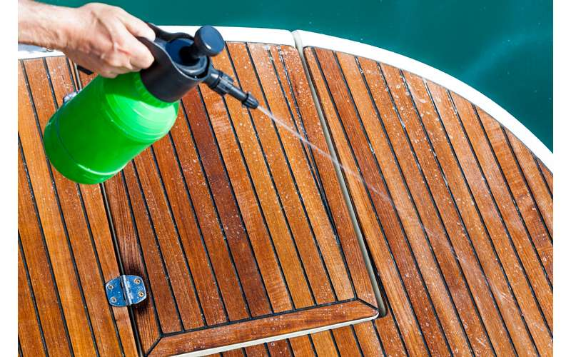 how to clean mold from boat carpet