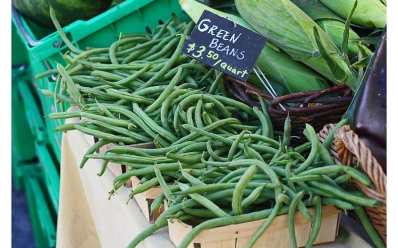 Green beans from Denison Farm will be as fresh as they get.