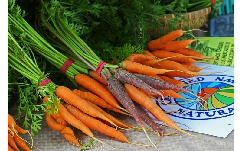 Purchase carrots and other tasty veggies from Fresh Take Farm.