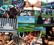 The 2016 Ultimate Saratoga Giveaway!