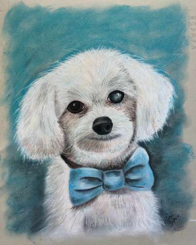 Making Pet Portraits in Pastel