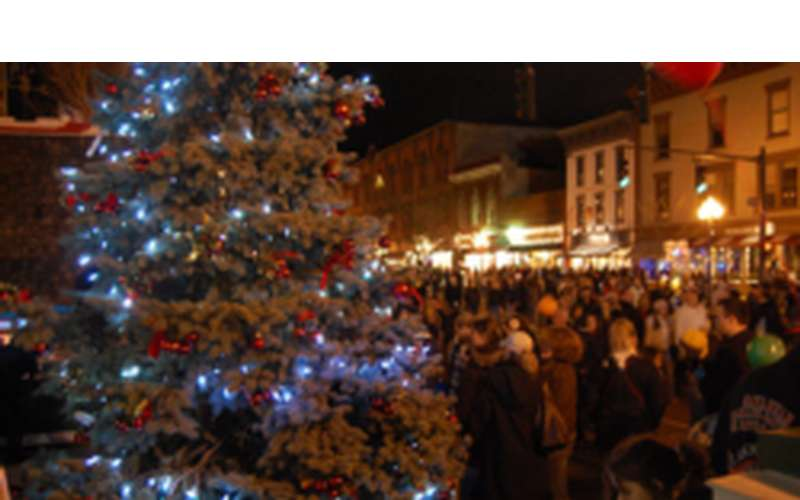 blurry image of the lit tree and the crowd