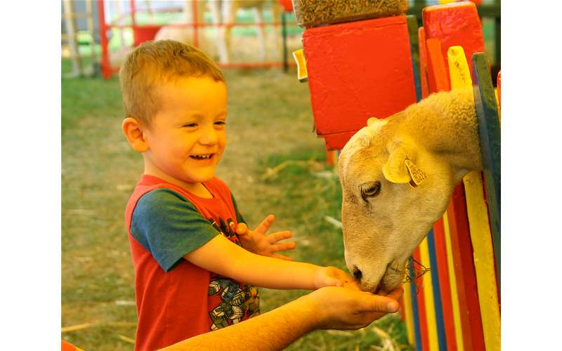 176th Saratoga County Fair (25)