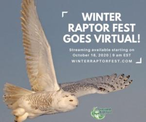 <PRE>7th Annual Winter Raptor Fest in Greenwich, NY</PRE>