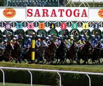 horses starting a race at saratoga
