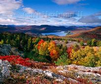 Fall Foliage in Lake George