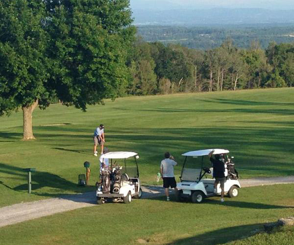golfers and carts