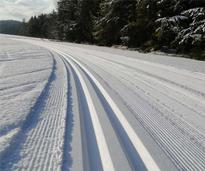 Lapland Lake Cross Country Ski Trails
