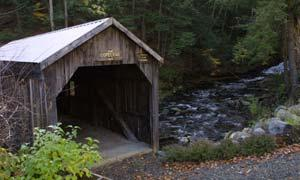 a covered bridge in the woods