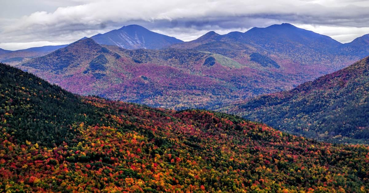 fall foliage summit view