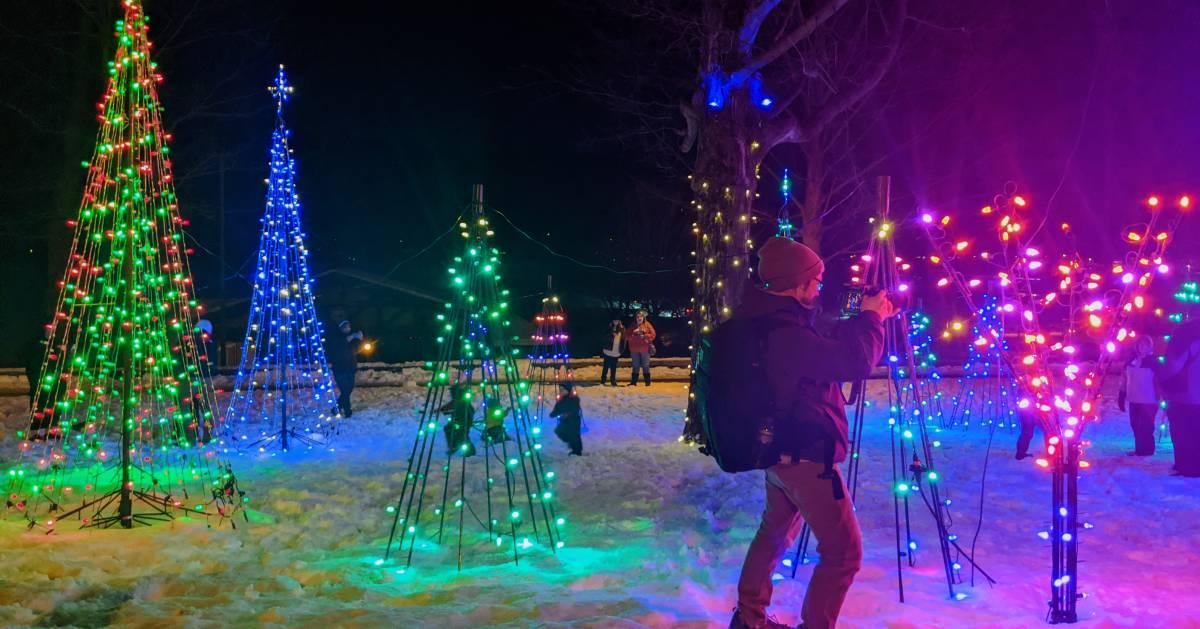 man takes photo of Christmas trees