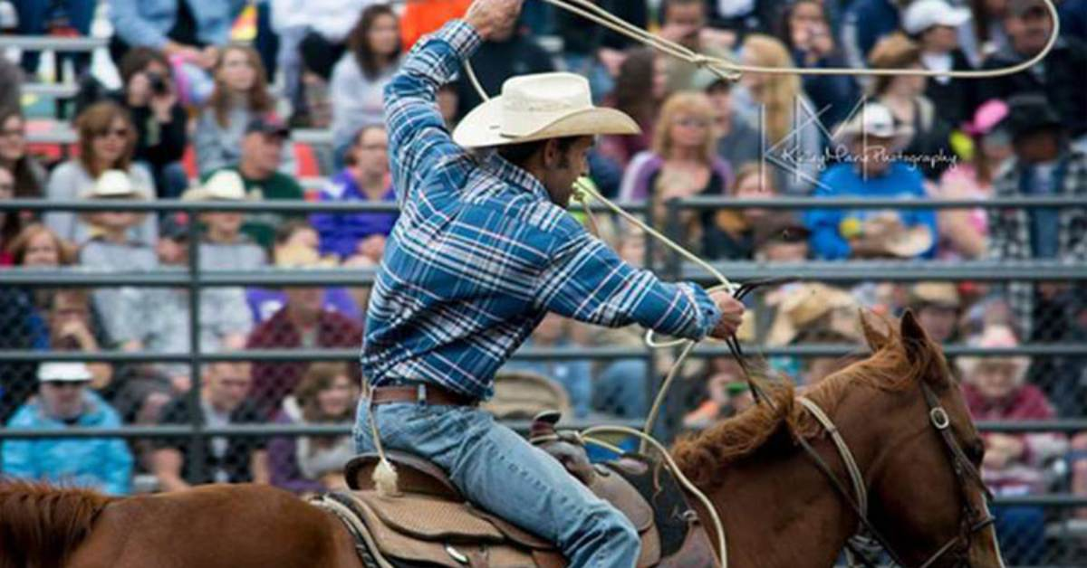 cowboy in a rodeo event