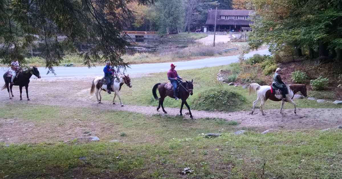 four people horseback riding on a trail