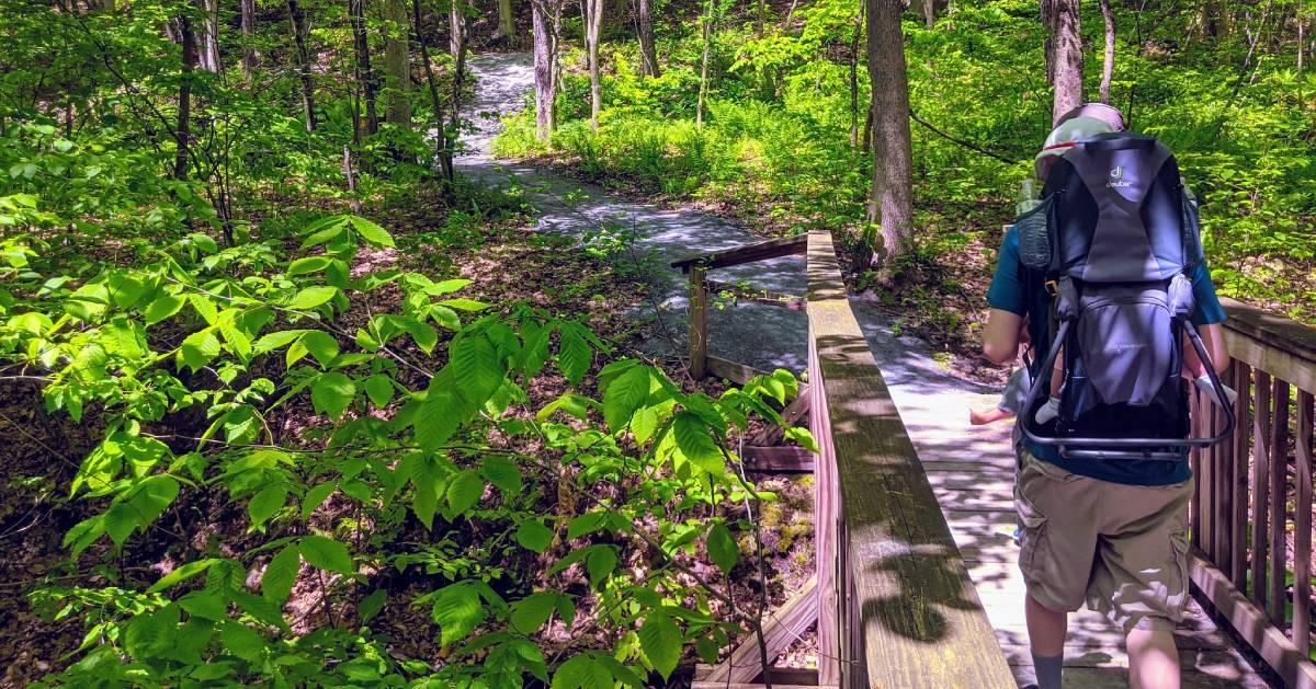 back of hiker on trail