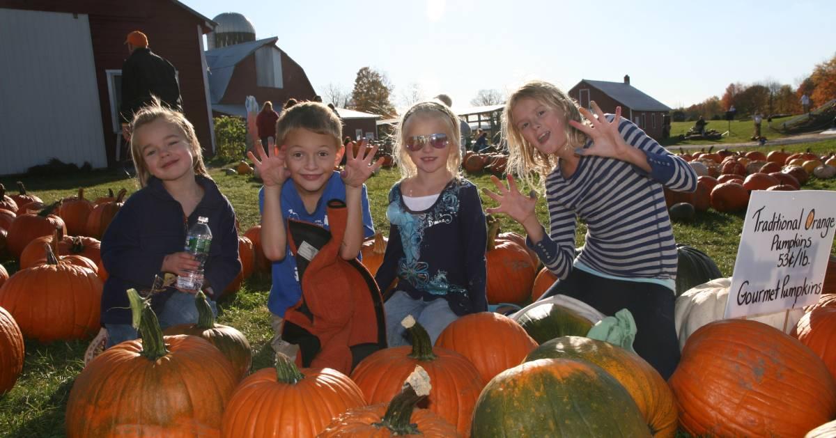 four kids posing near pumpkins