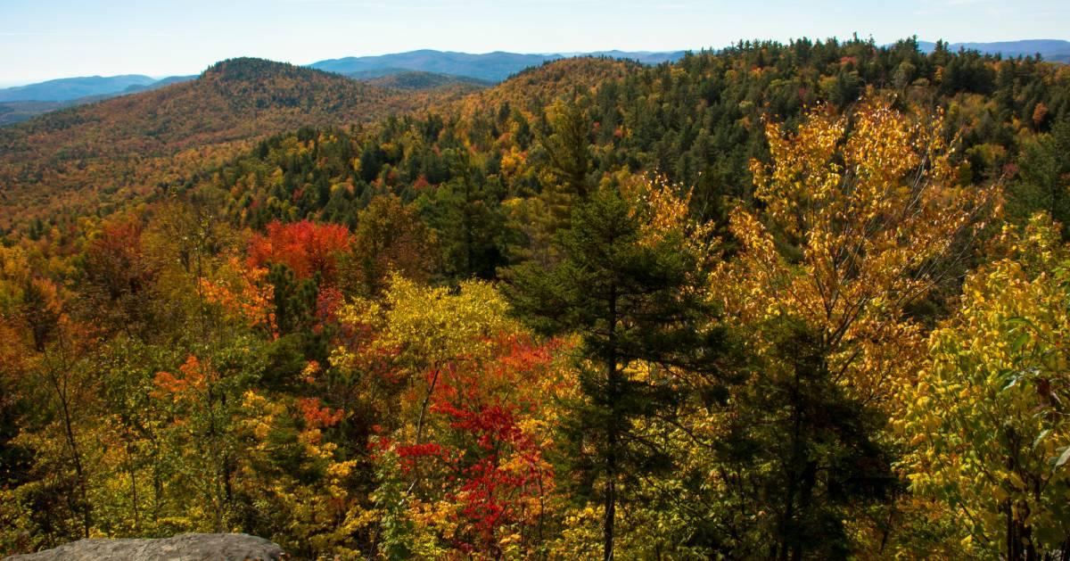 fall foliage from summit