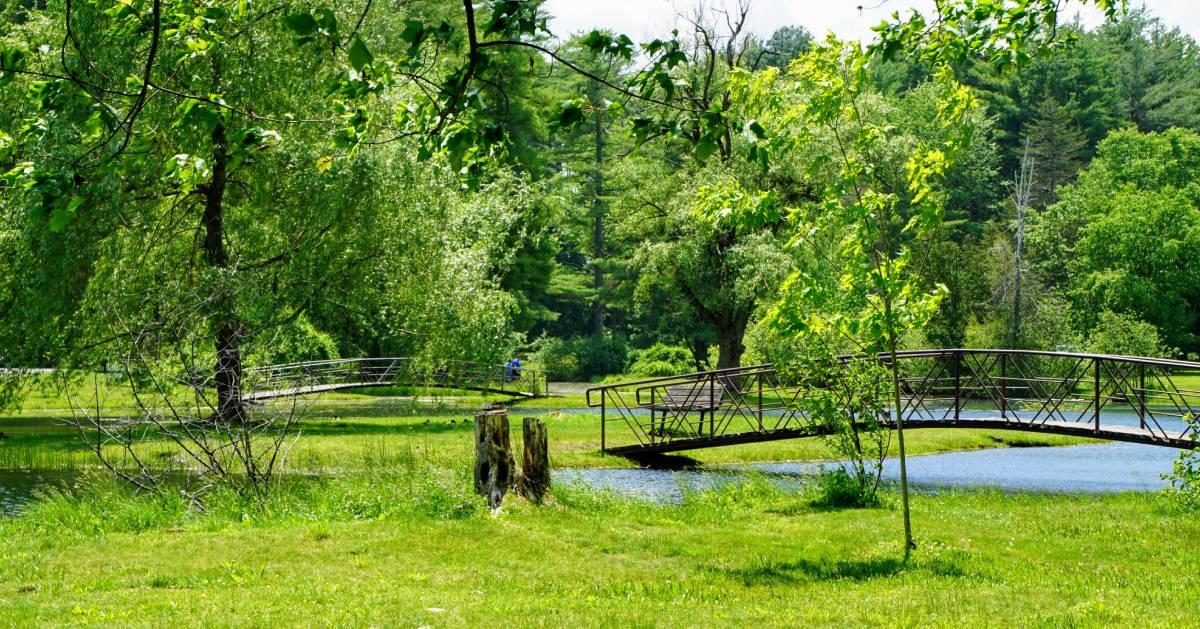 two walking bridges in a park