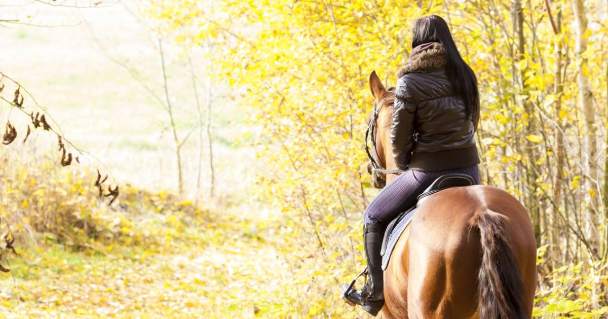 a girl horseback riding in the fall