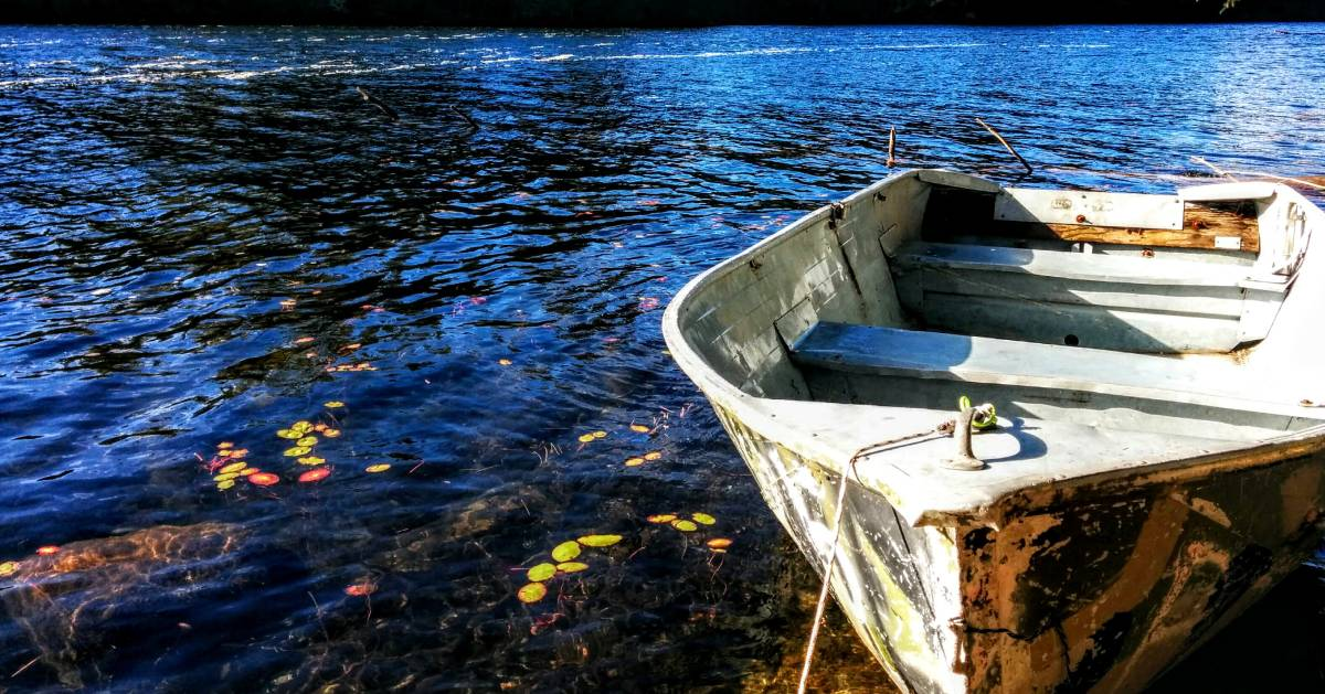 a rowboat in the water in the fall