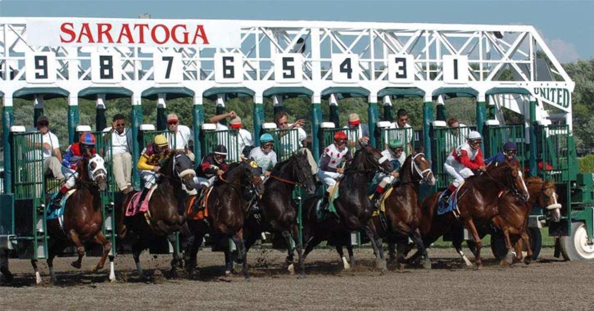 racehorses leaving starting gate at saratoga