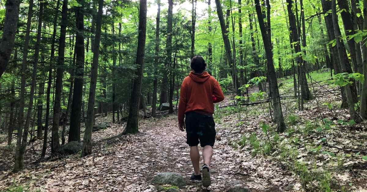 man on a hiking trail