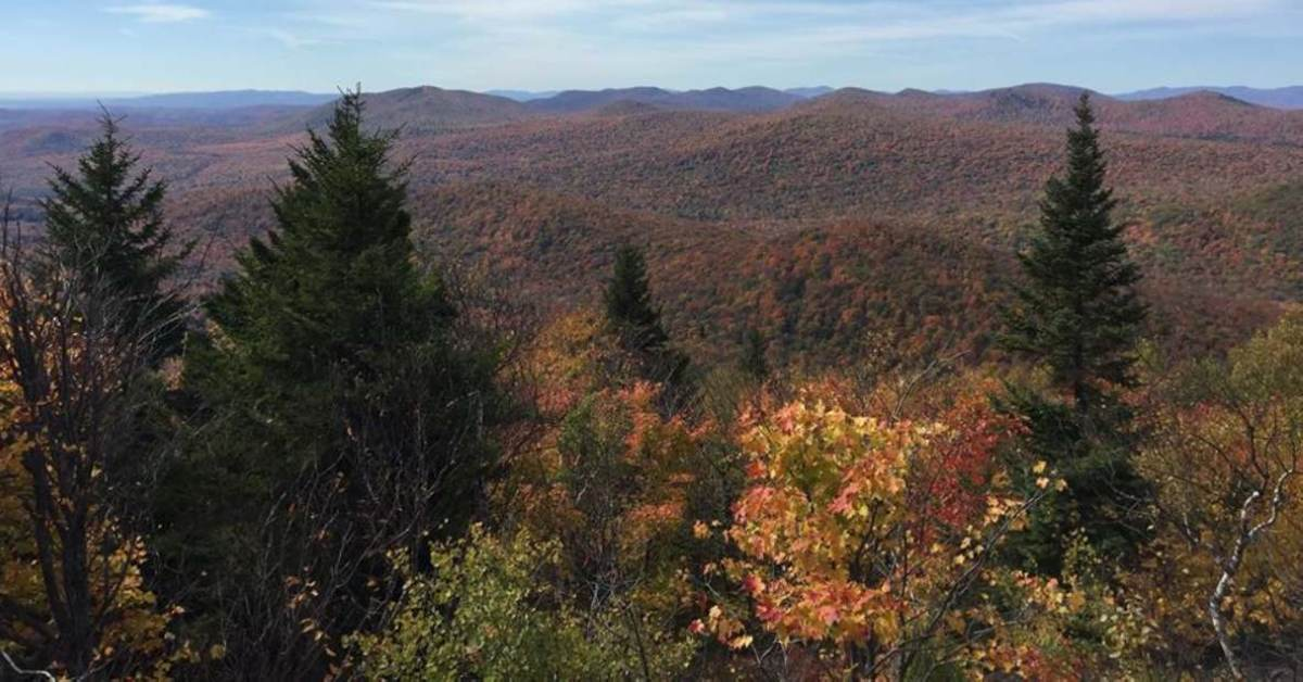 fall colors across mountains