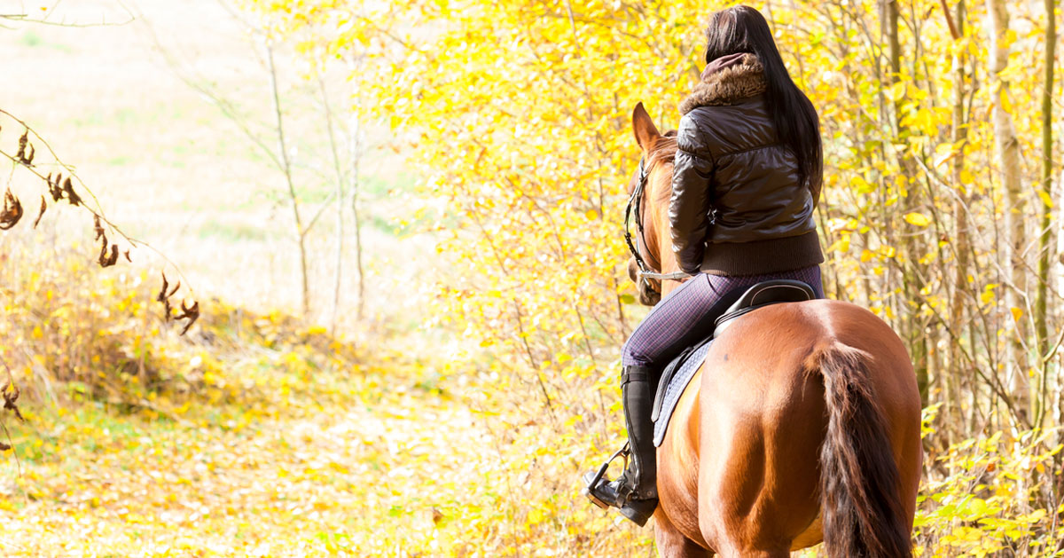 back of young woman horseback riding surrounded by yellow fall foliage