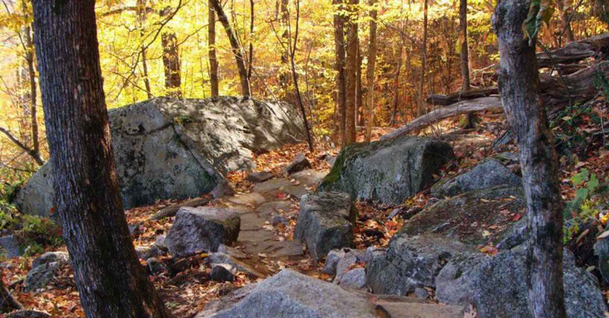 a trail on poke-o-moonshine mountain