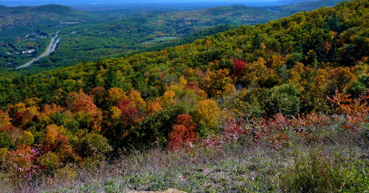 view of fall foliage from Prospect Mountain