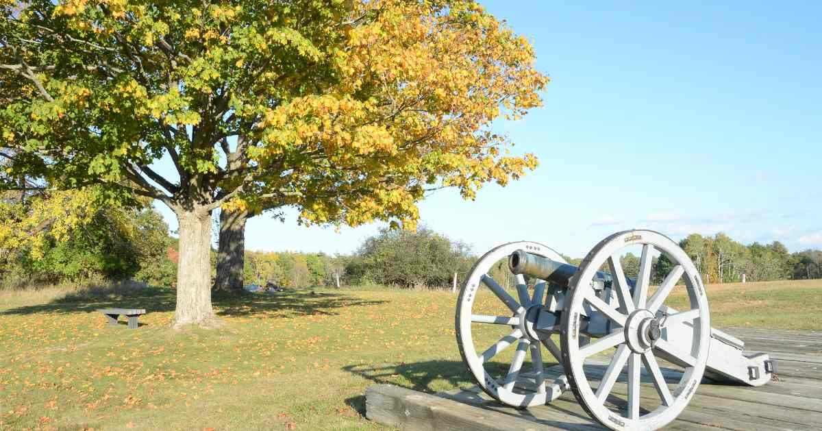 view of cannon near trees with fall colors