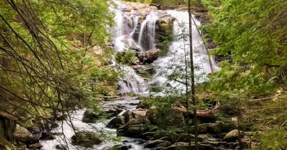 waterfall in woods