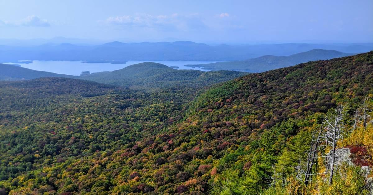 fall foliage view from mountain summit