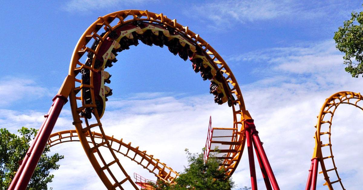 roller coaster near trees