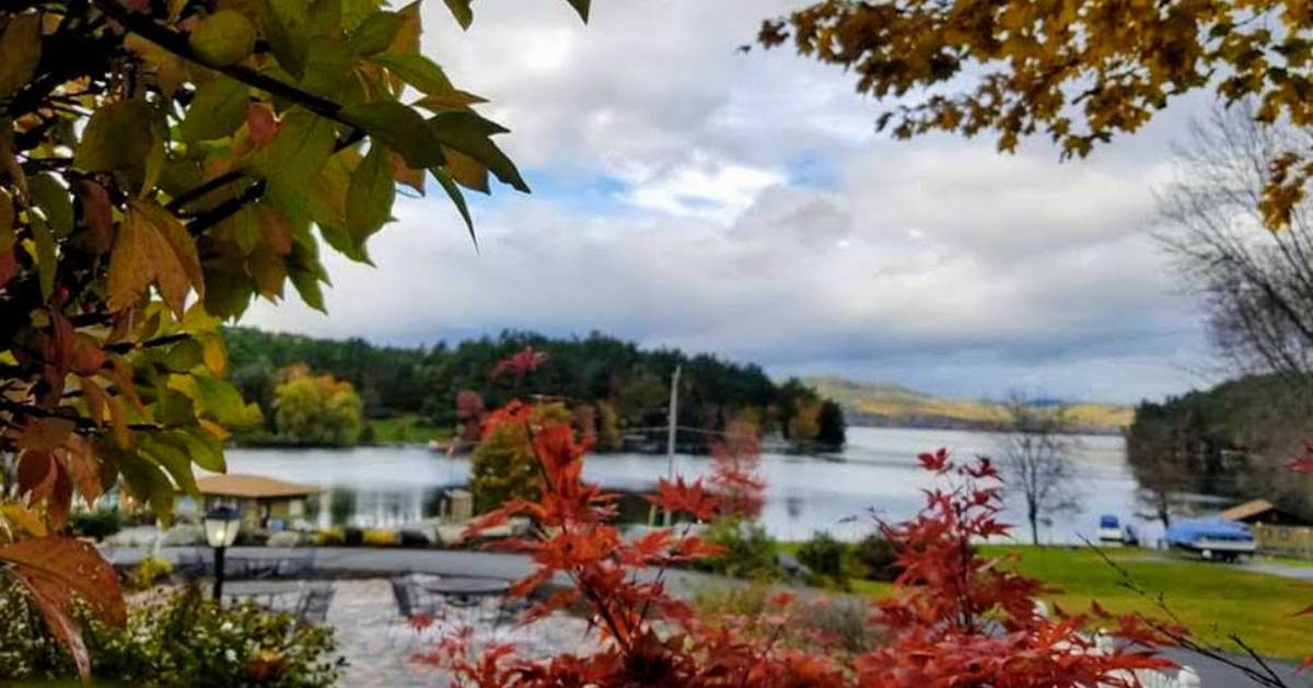 view of fall foliage over lake