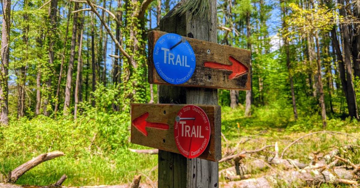 trailhead intersection sign with red and blue markers