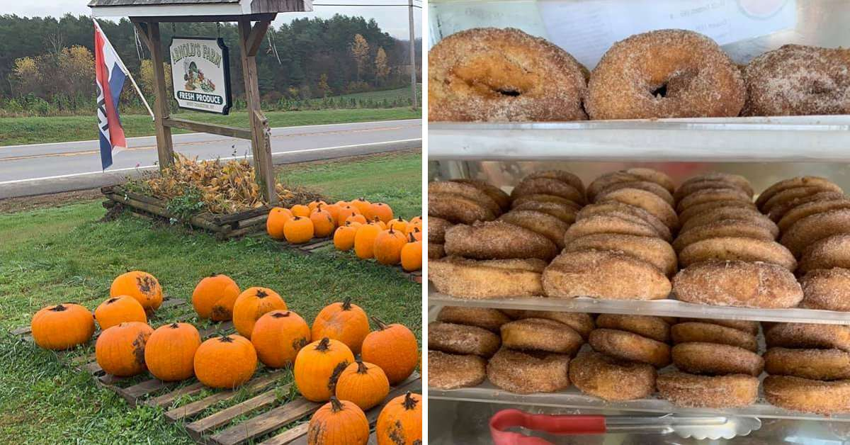 left image of pumpkins near a sign, right image of cider donuts