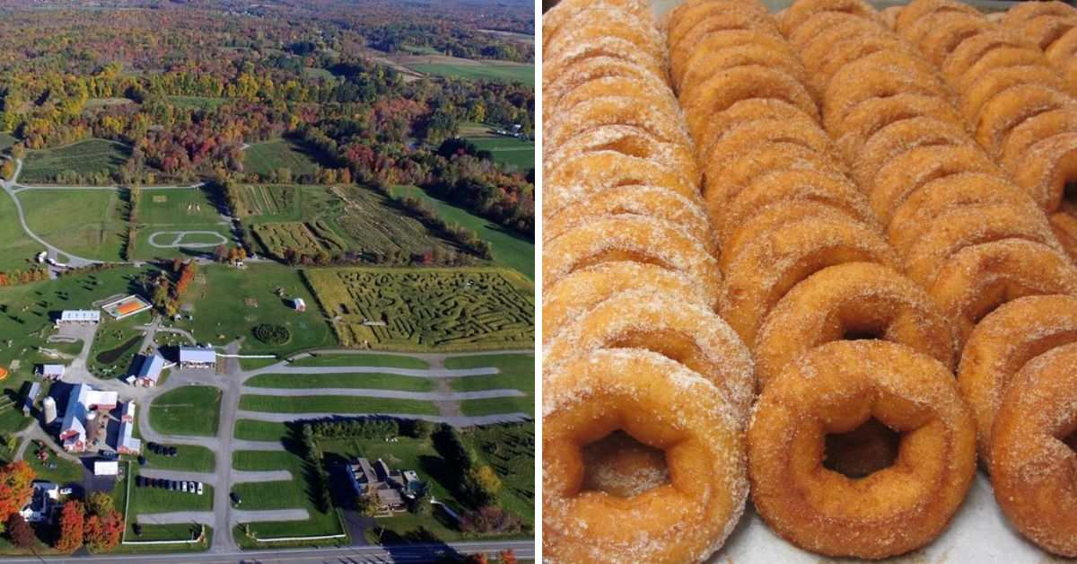 left image of an aerial view of a farm, right image of cider donuts