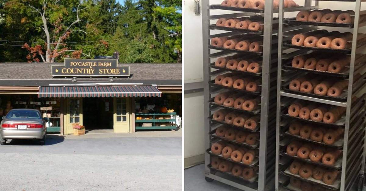 left image of country store, right image of cider donuts in racks
