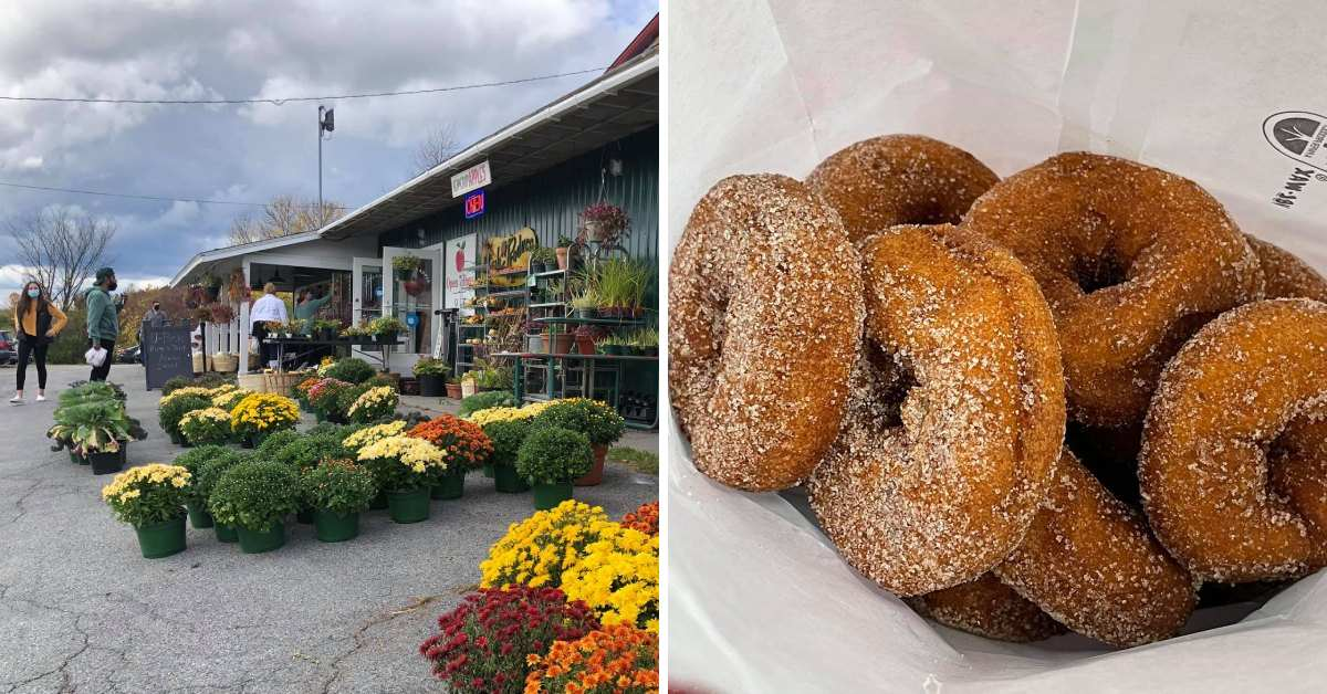 left image of a garden center, right image of cider donuts