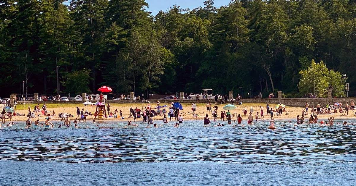 view of people swimming and on beach from the water