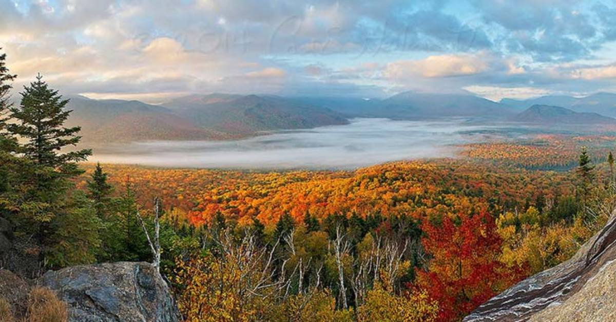 fall foliage view from summit