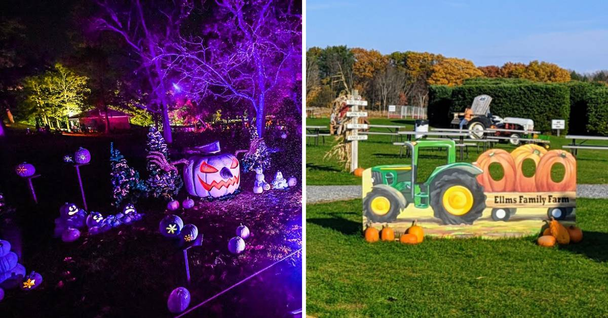 split image with evil pumpkin on night on the left and farm tractor sign on the right