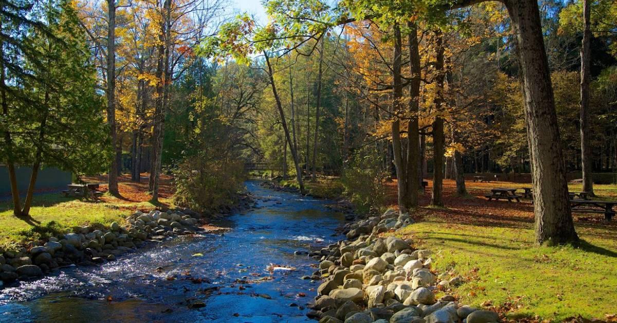 river through a park in fall